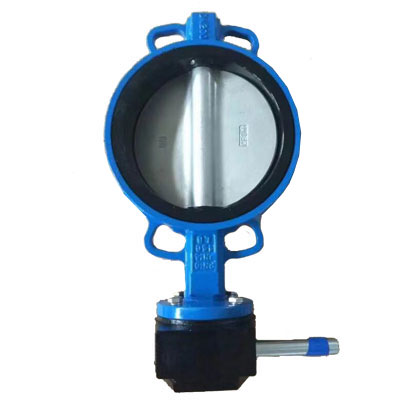 Butterfly valve with nylon disc